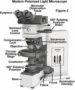 Polarized Microscope